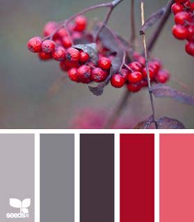Christmas palette red-grey 4